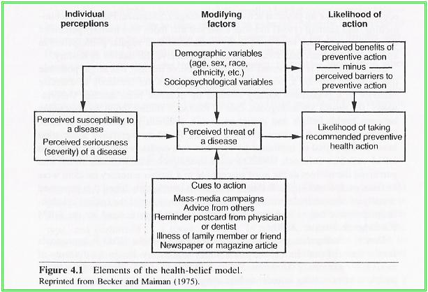 health belief model research paper The health belief model is a set  there are a number of sub-variables in the belief that a health  health behavior and health education theory, research.